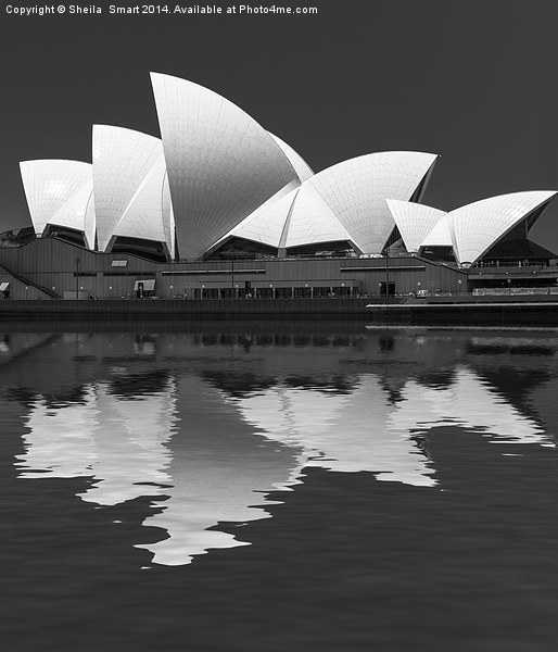 Sydney Opera House abstract Canvas print by Sheila  Smart
