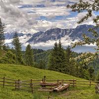 Buy canvas prints of  Alpine Beauty by Robert Murray