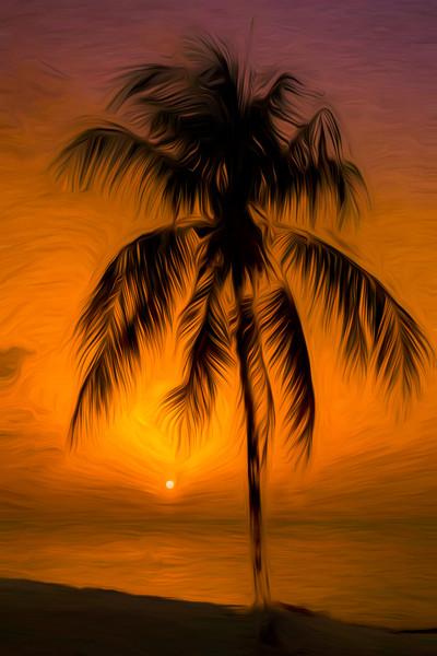 Caribbean sunset Canvas Print by Jason Wells