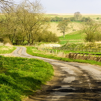 Buy canvas prints of  Thixendale Road by Richard Pinder