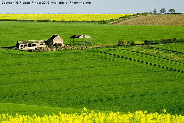 East Yorkshire Wolds Canvas print by Richard Pinder