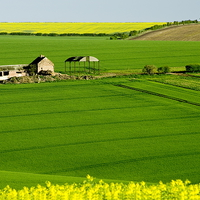 Buy canvas prints of East Yorkshire Wolds by Richard Pinder
