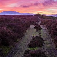 Buy canvas prints of Egton High Moor by Richard Pinder
