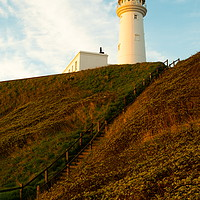 Buy canvas prints of Flamborough Head Lighthouse,  by Richard Pinder