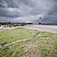 Buy canvas prints of SeaWeed at New Brighton Lighthouse by The Hungry  Aperture
