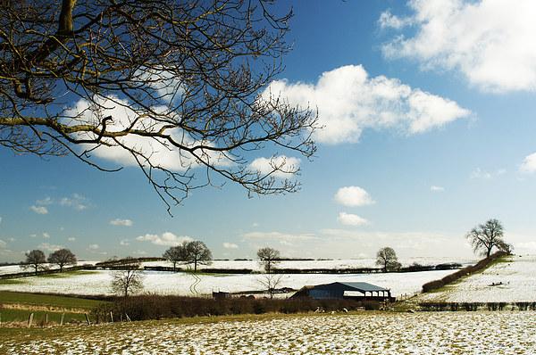 Snow in Spring Landscape Print by Steven Garratt
