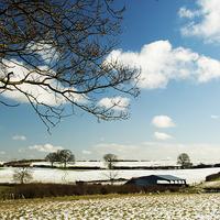 Buy canvas prints of Snow in Spring Landscape by Steven Garratt