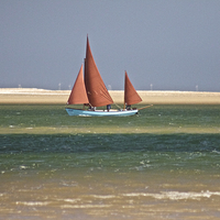Buy canvas prints of Brown Sail Boat by Sally Lloyd