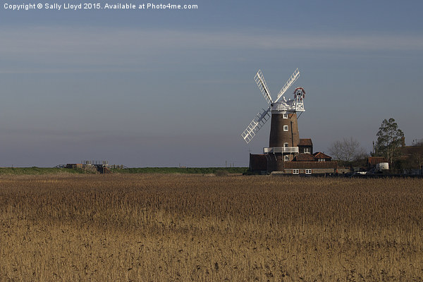 Cley Windmill north Norfolk  Framed Mounted Print by Sally Lloyd