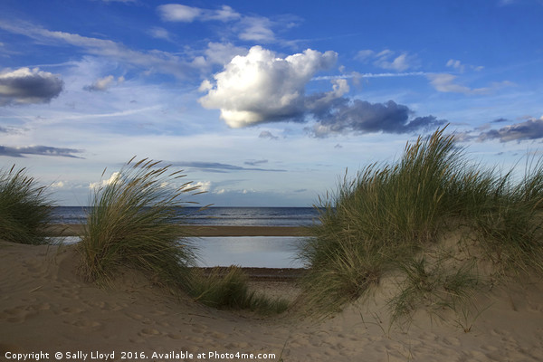 Between the Dunes Framed Mounted Print by Sally Lloyd