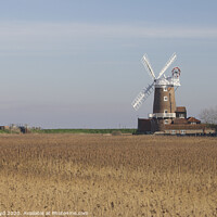 Buy canvas prints of Cley Mill across the cornfields by Sally Lloyd
