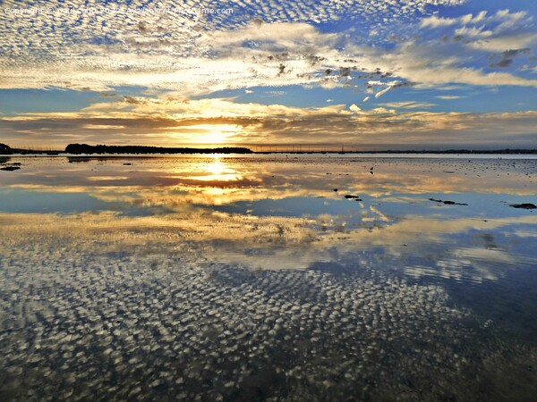 Sunset reflections. Framed Print by paul cobb