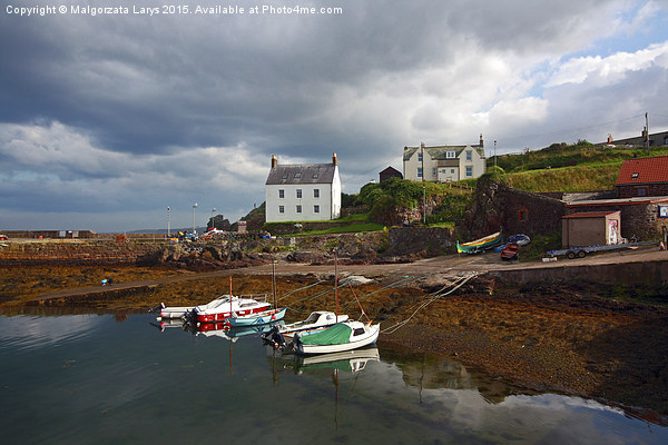St Abbs Harbour, Scotland, UK Canvas Print by Malgorzata Larys