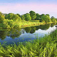 Buy canvas prints of Forth and Clyde Canal, Scotland by Malgorzata Larys