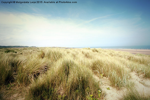 Beautiful beach with sand dunes and blue sky in UK Canvas Print by Malgorzata Larys