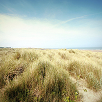Buy canvas prints of Beautiful beach with sand dunes and blue sky in UK by Malgorzata Larys