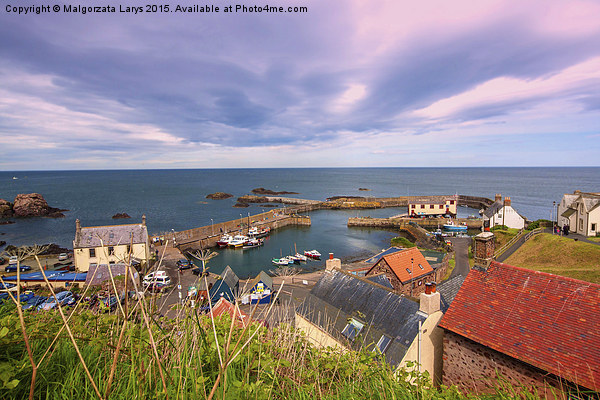 the harbour and village at St. Abbs in Berwickshir Canvas Print by Malgorzata Larys