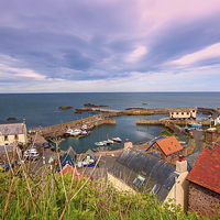 Buy canvas prints of the harbour and village at St. Abbs in Berwickshir by Malgorzata Larys