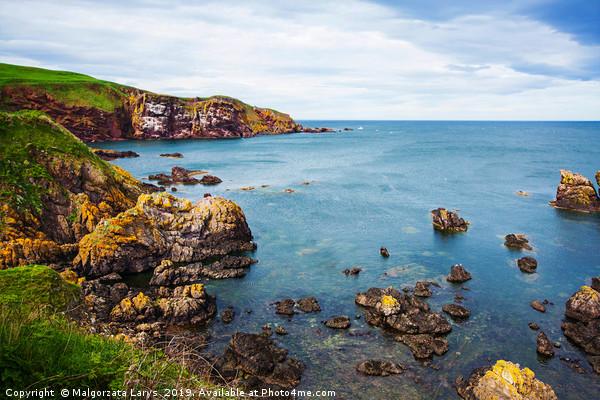St Abbs cliffs, Scotland Canvas Print by Malgorzata Larys