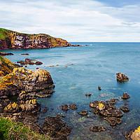 Buy canvas prints of St Abbs cliffs, Scotland by Malgorzata Larys