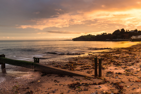 Golden Dawlish Canvas print by Dave Rowlatt