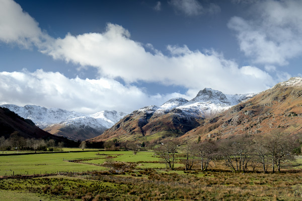 The Langdales Canvas print by Dave Rowlatt
