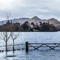 Buy canvas prints of The Gate by Dave Rowlatt