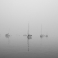 Buy canvas prints of  Tobermory in a summer fog by Ian Young