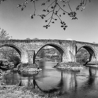 Buy canvas prints of  Stirling Bridge by Ian Young