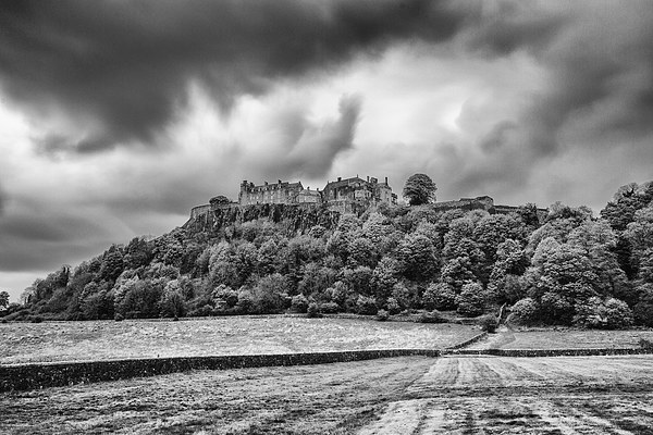 Stirling Castle Canvas print by Ian Young