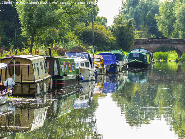 The Tranquil Chelmer and Blackwater Navigation Canvas print by Judith Lightfoot