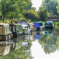 Buy canvas prints of The Tranquil Chelmer and Blackwater Navigation by Judith Lightfoot