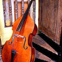 Buy canvas prints of The Cello by Judith Lightfoot