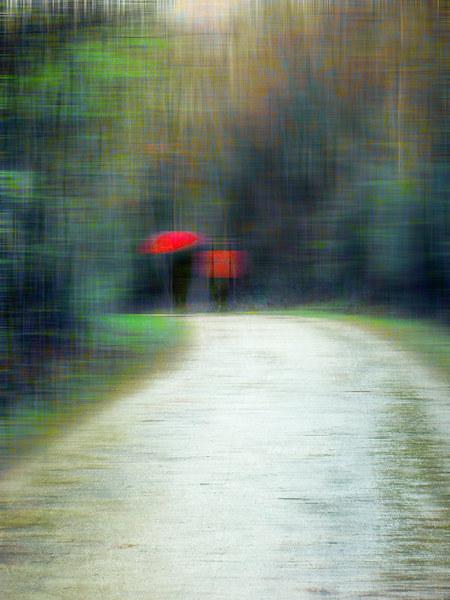 Walk In The Rain  Canvas Print by Florin Birjoveanu