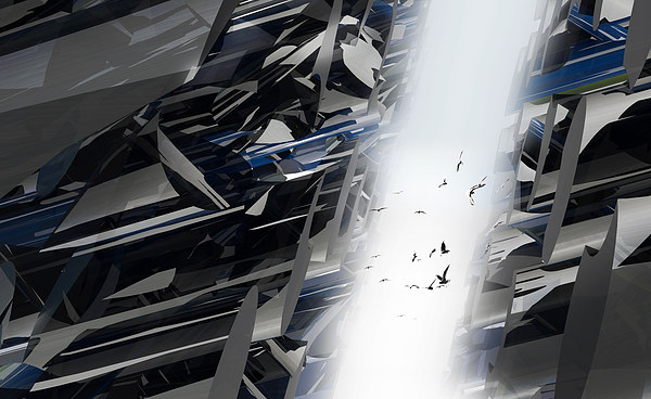 Flying Through Canvas Print by Florin Birjoveanu