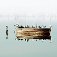 Buy canvas prints of Resting On A Boat by Florin Birjoveanu