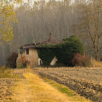 Buy canvas prints of Autumn colours landscape Italy by Fabrizio Malisan