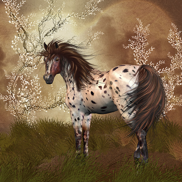 Golden Hour Equine Horse Wall Art Canvas print by Tanya Hall