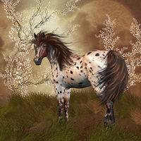 Buy canvas prints of Golden Hour Equine Horse Wall Art by Tanya Hall