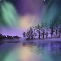 "Buy canvas prints of ""dawn of the north"" - The Northern Lights  by Tanya Hall"