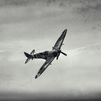 Buy canvas prints of  Spitfire by David Hirst