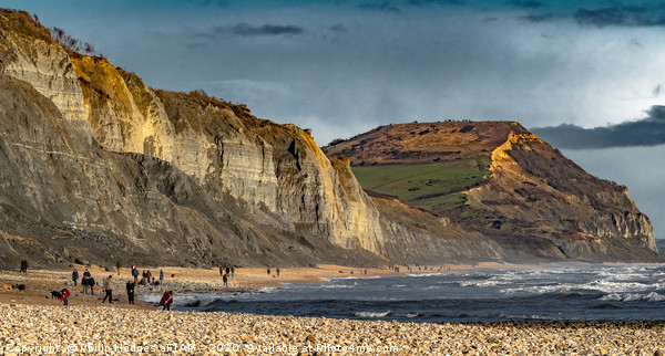 Charmouth to Golden Cap Canvas Print by Philip Hodges aFIAP ,