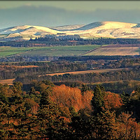 """Buy canvas prints of """"EVENING LIGHT ON THE SNOW TOPPED CHEVIOTS"""" by ROSALIND RIDLEY"""
