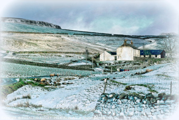"""""""Farmhouse in Teesdale"""" Framed Mounted Print by ROSALIND RIDLEY"""