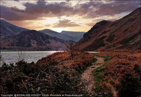 """Evening Light at Ennerdale water Canvas print by ROSALIND RIDLEY"