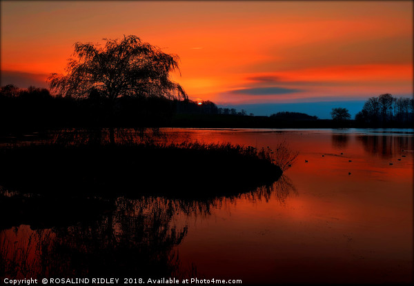 """""""Fiery sunset at the lake"""" Canvas print by ROSALIND RIDLEY"""