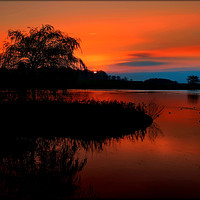 """Buy canvas prints of """"Fiery sunset at the lake"""" by ROSALIND RIDLEY"""