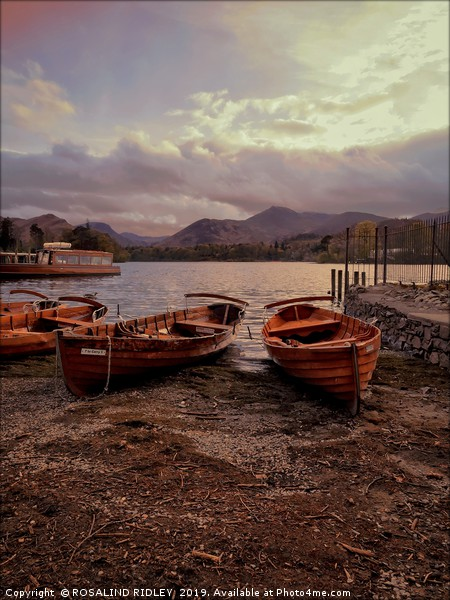 Evening light on Derwentwater boats Framed Mounted Print by ROSALIND RIDLEY