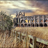"""Buy canvas prints of """"breezy sunset at Whitby Abbey"""" by ROSALIND RIDLEY"""