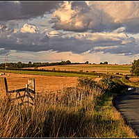 """Buy canvas prints of """"Evening light Fishburn County Durham"""" by ROSALIND RIDLEY"""